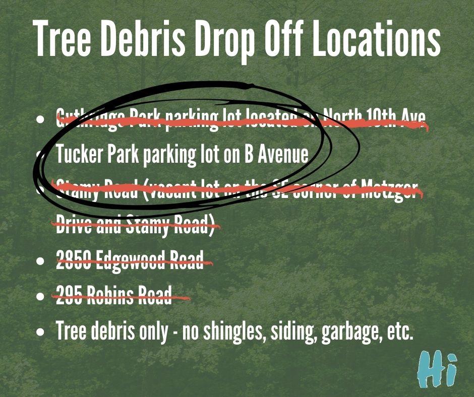 tree debris (1)